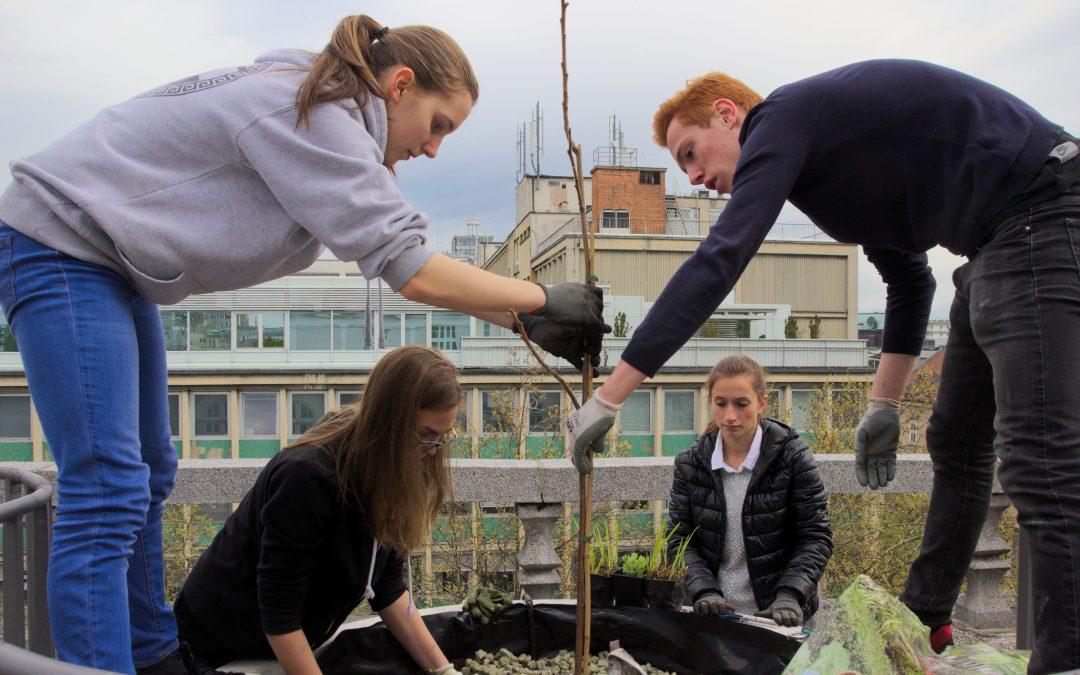 Otvoritev šolske terase  ob svetovnem dnevu Zemlje z gostovanjem novozelandskega orkestra