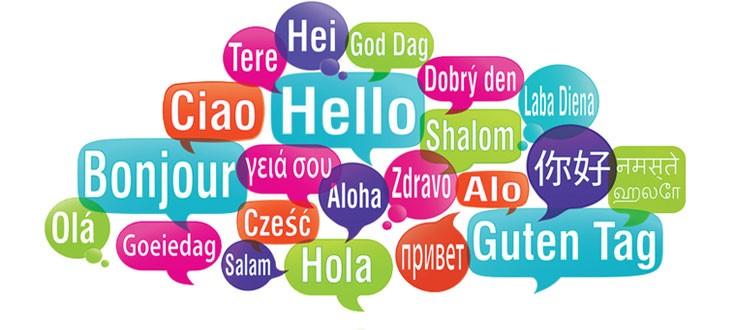 Anketa o znanju jezikov