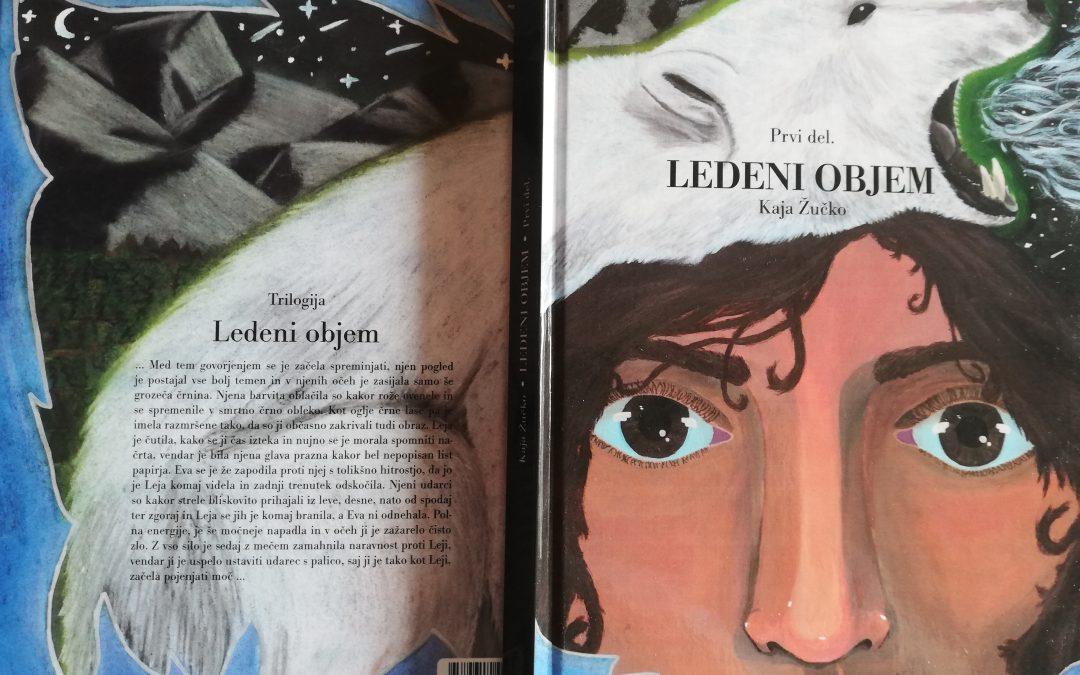 Predstavitev knjige dijakinje Kaje Žučko Ledeni objem