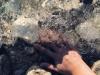 thumbnail_nastja-filipic-1-f